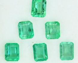 1.20 Cts Natural Vivid Green Colombian Emerald 6 Pcs Octagon Parcel