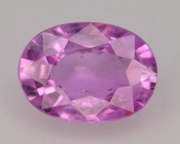 Top Color 1.65 ct Natural Pink Sapphire