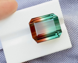 38.85 Carat Natural Bi Color Tourmaline Gemstone