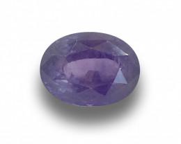 GIA Natural Unheated Purple Sapphire|Loose Gemstone| Sri Lanka New