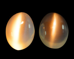 2.90 Cts Natural  Moonstone Cat's Eye 8x6mm Oval Cabs Bihar-India