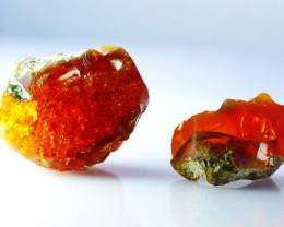 64.65 CT Natural - Unheated Orange Opal Rough Lot