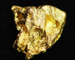 1.59 Grams Queensland Geroge Town  Gold Nugget, Australia LGN 1630