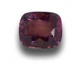 Natural Purple Sapphire|Loose Gemstone|New| Sri Lanka