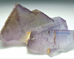 Amazing Natural color Damage free Phantom Fluorite Specimen 311Cts-P