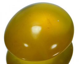 ~TRANSPARENT~ 20.93 Cts Natural Honey Yellow Opal Cabochon Mexican