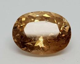 6.35Crt Topaz Natural Gemstones JIn51