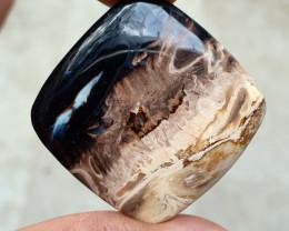 52CT PALM ROOT AGATE Natural Untreated Gemstone VA2381