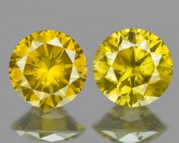 0.42 Cts 2 pcs Sparkling Rare Fancy Vivid Yellow Color Natural Loose Diamon