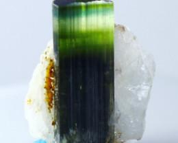 14.60 CT Natural - Unheated Green Cap Tourmaline Crystal