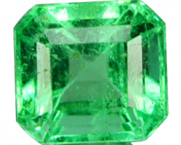 Natural Vivid Green Emerald Octagon Cut Colombia 0.39 Cts