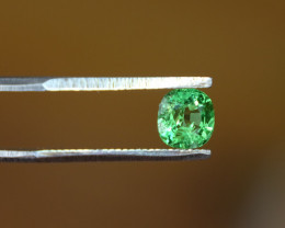 0.71ct - Glowing Green - Tsavorite - Cert -