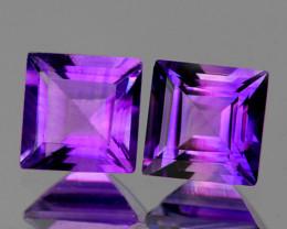 6.00 mm Square 2 pcs 2.20cts Purple Amethyst [VVS}