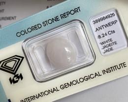 UNTREATED White Jadeite Jade 8.24ct A Grade IGI CERTIFIED Oval Cabcohon Gem