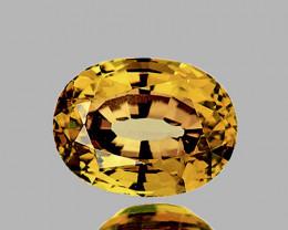 8x6 mm Oval 2.17cts Golden Yellow Zircon [VVS]