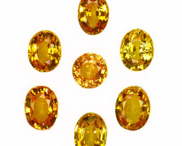 2.79 Cts Natural Sparkling Yellow Sapphire Oval Cut 7Pcs Madagascar