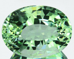 15.57Cts Natural Prasiolite(Green Amethyst ) Oval cut