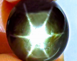 14.54 Ct. Top Thailand Black Star Sapphire - Gorgeous