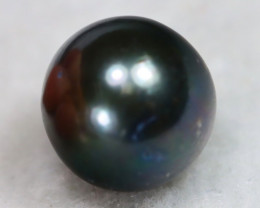 South Sea Pearl 11.1mm Natural Black Color Salt Water Pearl A2611