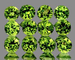 4.00 mm Round 12 pcs 3.55cts Green Peridot [VVS}