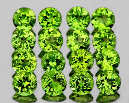 3.50 mm Round 16 pcs 3.14cts Green Peridot [VVS]