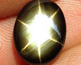 4.89 Carat Thailand Black Star Sapphire