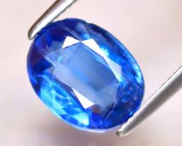 Kyanite 2.44Ct Natural Himalayan Royal Blue Color Kyanite EAF3024/A401