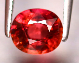 Tourmaline 1.33Ct Natural Reddish Orange Tourmaline EF0122/B19