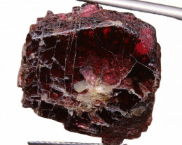25.65 CTS GARNET NATURAL BEAD DRILLED  NP-779