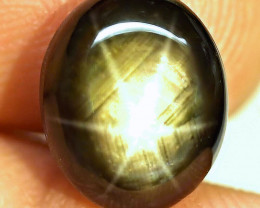 9.98 Carat Thailand Black Star Sapphire - Gorgeous