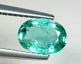 1.01 ct  Collective Gem Top Green Beautiful Oval Cut Natural Emerald