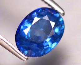 Blue Sapphire 1.60Ct Natural Blue Sapphire DR352/B5