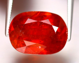 Spessartite Garnet 12.25Ct Natural Orange Spessartite Garnet DR372/B34