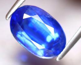 Kyanite 3.40Ct Natural Himalayan Royal Blue Color Kyanite EF0925/A401