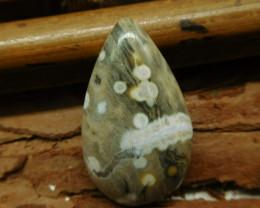 Natural gemstone ocean jasper cabochon (G2234)