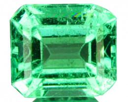 Natural Vivid Green Emerald Octagon Cut Colombia 0.44 Cts