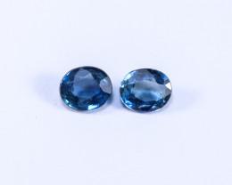 1.25tcw Natural Blue Sapphire Earrings