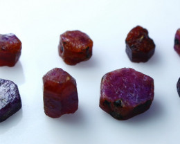 59.15 CT Natural - Unheated Red Ruby Rough Lot