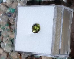 Australian Capricorn green Sapphire