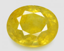 2.01 Carat Very Rare Yellow Color Natural Sapphire Loose Gemstones