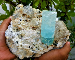Amazing Natural color Damage free Huge Etched Aquamarine with Tourmaline an