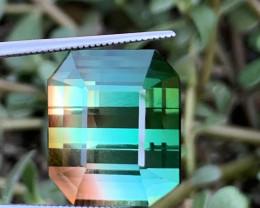 24.10 carats Bi-colour Tourmaline Gemstone From Afghanistan
