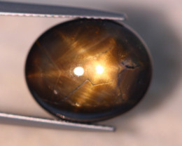 8.84ct Natural 6 Rays Black Star Sapphire Lot D481