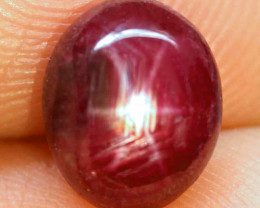 5.0 Carat Star Ruby - Gorgeous