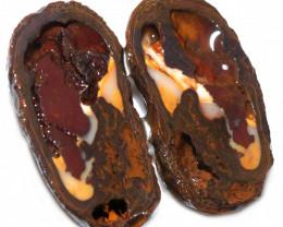 142.75 CTS YOWAH PHANTOM NUTS SPECIMEN-AUSTRALIA [MGW8068]