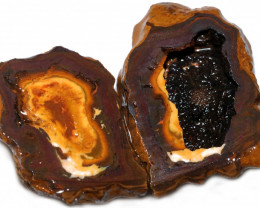 190.35 CTS YOWAH PHANTOM NUTS SPECIMEN-AUSTRALIA [MGW8069]