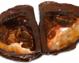 273.80 CTS YOWAH PHANTOM NUTS SPECIMEN-AUSTRALIA [MGW8071]