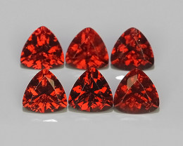 6.00 CTS NATURAL -RHODOLITE ORANGE-RED TRILLION GARNET 6 PCS!!