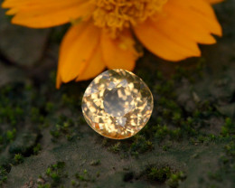 3.45 Ct Natural Heliodor ~ AAA Grade ~ Yellow Color