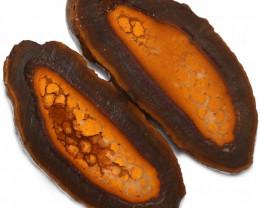124.85 CTS YOWAH PHANTOM NUTS SPECIMEN-AUSTRALIA [MGW8075]
